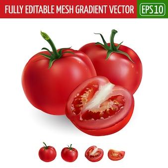 Tomaten auf weiß