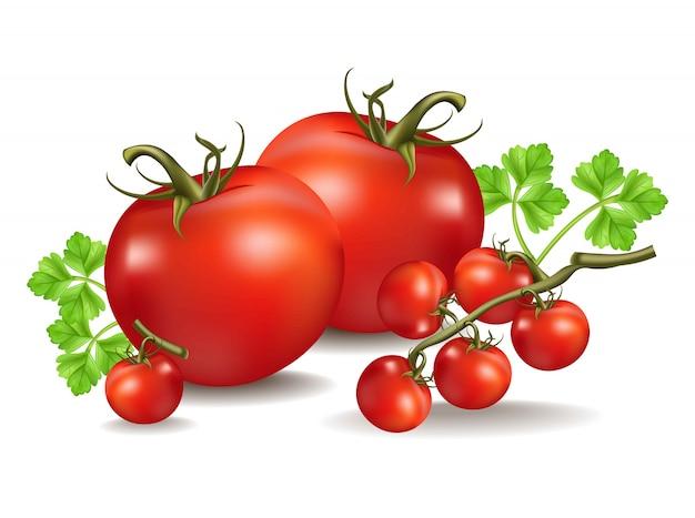 Tomaten realistisch