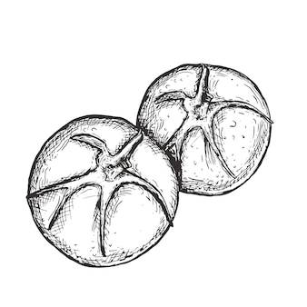 Tomatenlinie gezeichnete illustration der kunst hand, vektorkunst