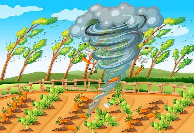 Tornado in der bauernhofszene