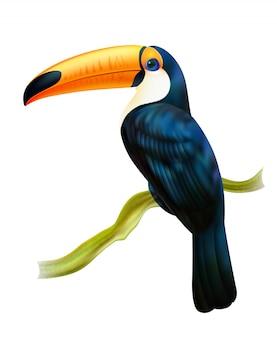 Toucan, das auf realistischem bild des zweigs sitzt