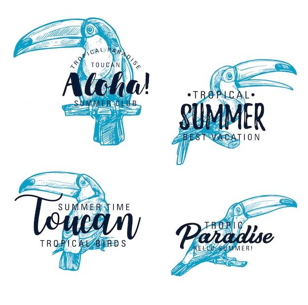 Toucan exotische vogelvektorskizzenbeschriftung