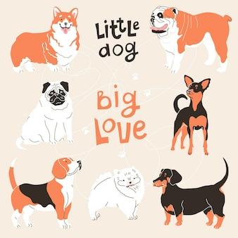 Toyterrier englische bulldogge dackel mops corgi pomeranian vector illustration