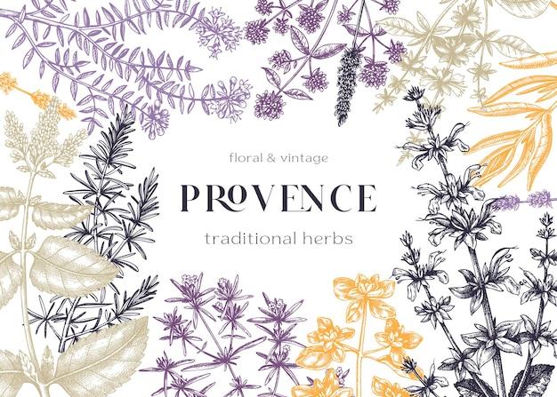 Traditioneller kräuterrahmen der provence mit herzhaftem majoran rosmarin thymian oregano lavendel. handskizze