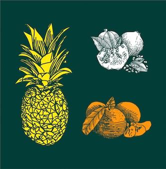 Trägt gezeichnete art der illustration hand früchte