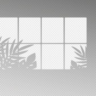 Transparente schatten überlagern den effekt mit verschiedenen blättern