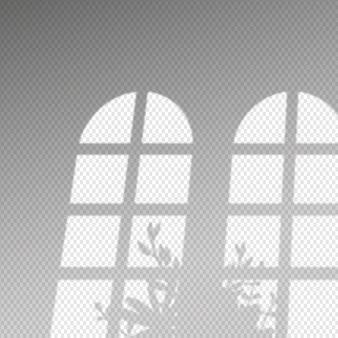 Transparente schatten überlagern effekt und busch der blätter