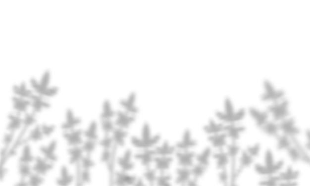 Transparenter realistischer blumenschatten-overlay-effekt. mit schatten von blättern und pflanzen.