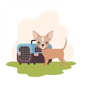 Transportbox für hunde und haustiere mit landschaft
