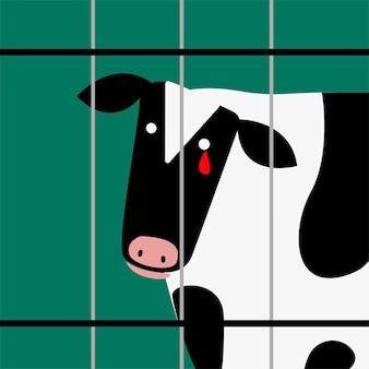 Traurige kuh in schreiendem blut der gefangenschaft