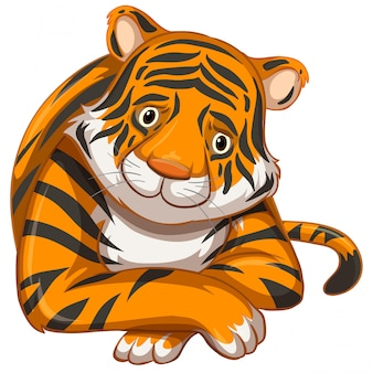 Trauriger tiger auf weiß