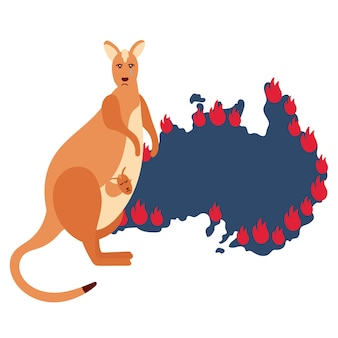 Trauriges kängurujunges versteckt feuer