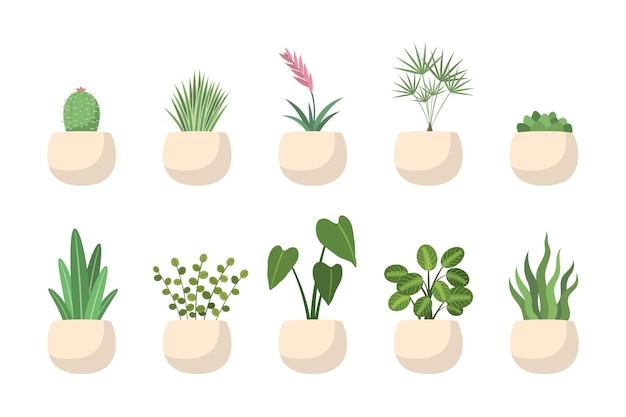 Trendige indoor-wachstumsgrünpflanze im topf für heimdschungel-set. büro- oder hausrauminnenraum-ökogrün, blattblume, saftige, dekorative palme, kaktusvektorillustration lokalisiert auf weiß