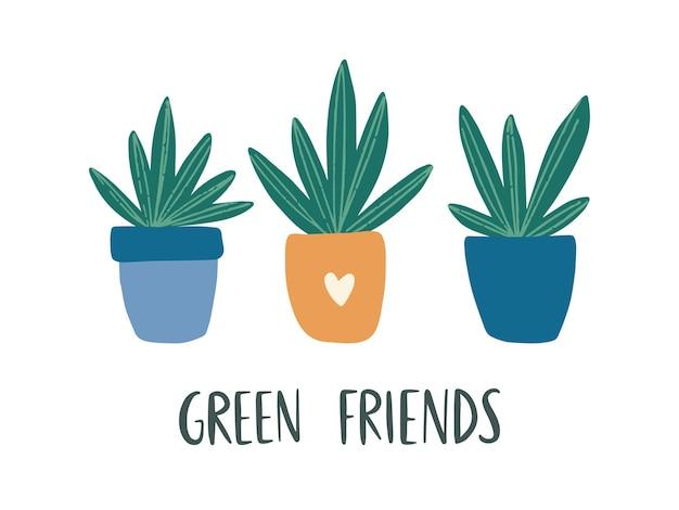 Trendy wohnkultur mit zimmerpflanze