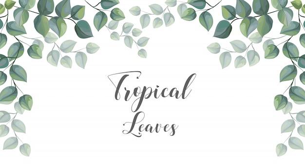 Tropische blätter auf rahmen für textvektorillustration
