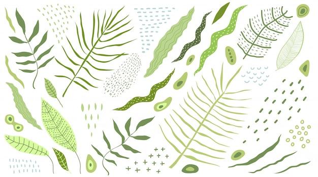 Tropische blätter clipart flache designobjekte. isoliert auf designer-sammlung weißer blätter und naturobjekte.