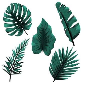 Tropische blätter im monochromatischen stil