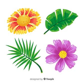 Tropische blätter und blüten