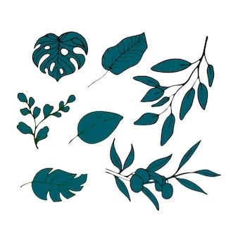 Tropische blätter und oliven. vektor-illustration isolierten hintergrund.