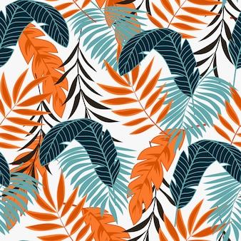 Tropische blätter und pflanzen