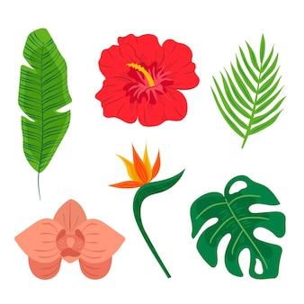 Tropische blatt- und blumensammlung