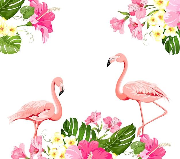 Tropische blume und flamingos auf weißem hintergrund. vektorillustration.