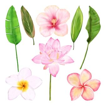 Tropische blumen. hawaiianisches blumenset mit blumen und blättern