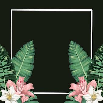 Tropische blumen pflanzen blätter laub