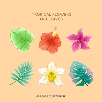 Tropische blumen und blätter des aquarells
