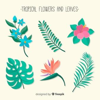 Tropische blumen und blätter