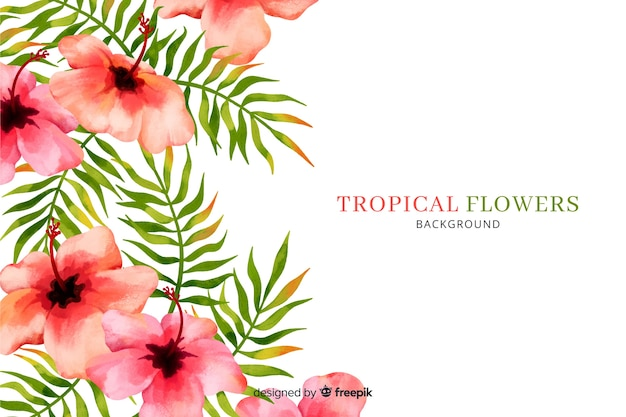 Tropische blumen- und blattsammlung