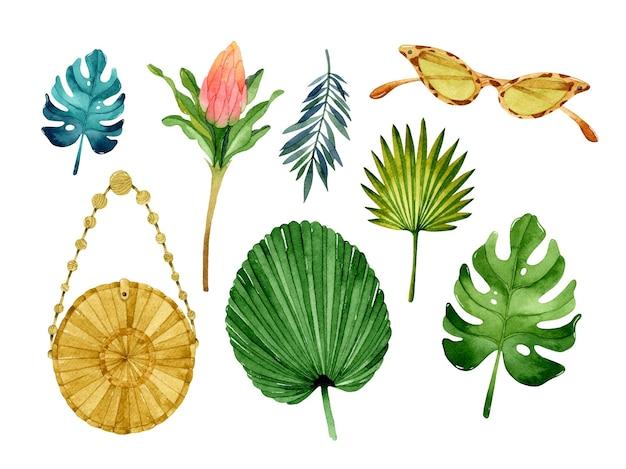 Tropische botanische aquarellelemente eingestellt isoliert