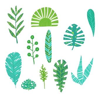 Tropische botanische flora des exotischen entwurfs hawaii-monstera des blattsommerdschungelgrün-palmblattes
