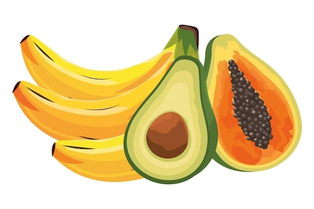 Tropische frucht-karikatur