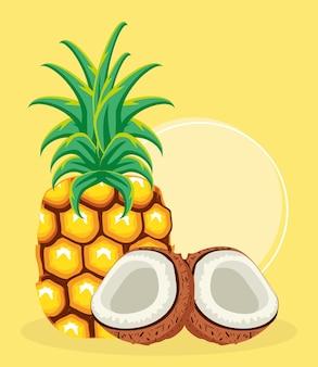 Tropische früchte ananas kokos frisch