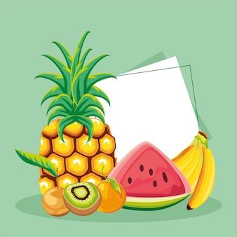 Tropische früchte ananas wassermelone kiwi