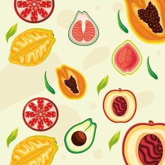Tropische früchte aprikosen-orangen-papaya