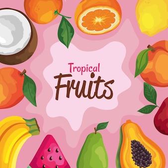 Tropische früchte schriftzug