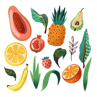 Tropische früchte und blätter gesetzt