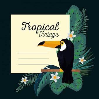 Tropische karte mit tukan und blattanlagen