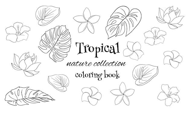 Tropische kollektion mit exotischen blumen und geschnitzten blättern im linienstil-malbuch. vektorillustration für das design lokalisiert auf weißem hintergrund.