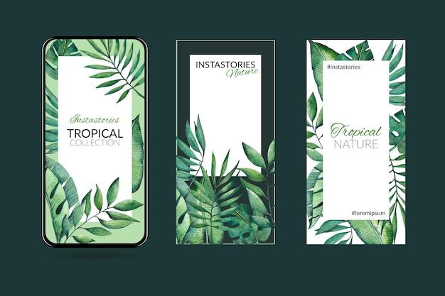 Tropische natur mit exotischen blättern instagram geschichten