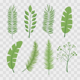Tropische palmblätter und dschungelblätter. satz trendige illustrationen des vektors lokalisiert auf transparentem kariertem.