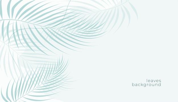 Tropische palmblätter weiß