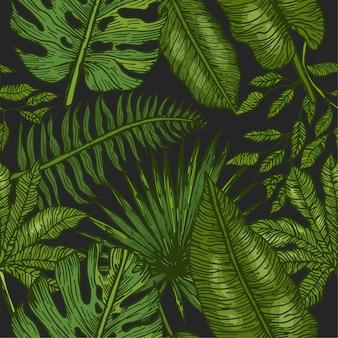 Tropische palmblätter Premium Vektoren
