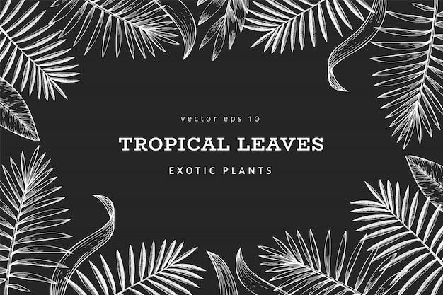 Tropische pflanzen banner. hand gezeichnete exotische blattillustration des tropischen sommers auf kreidebrett.