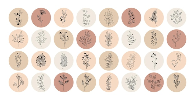 Tropische pflanzen, blätter und zweige mit blüten, satz von nerd-elementen mit kreisen verschiedener farben