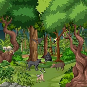 Tropische regenwaldszene mit verschiedenen wilden tieren