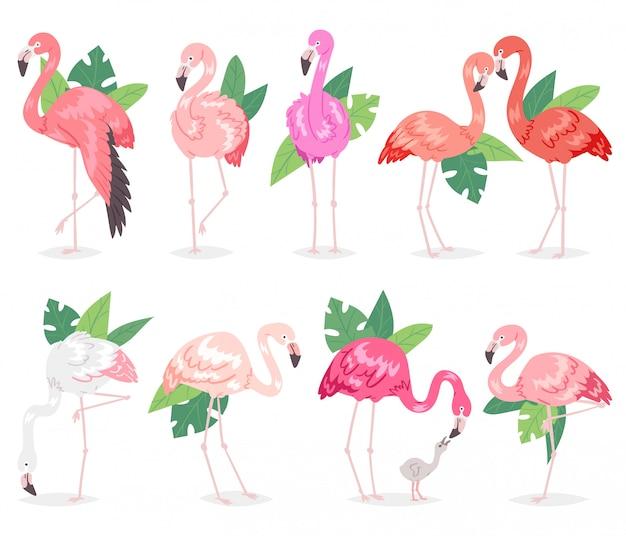 Tropische rosa flamingos des flamingos und exotischer vogel mit palmblättern illustrationssatz modevogel in den tropen auf weiß