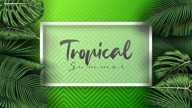 Tropische sommerblätter mit dschungelpflanzen